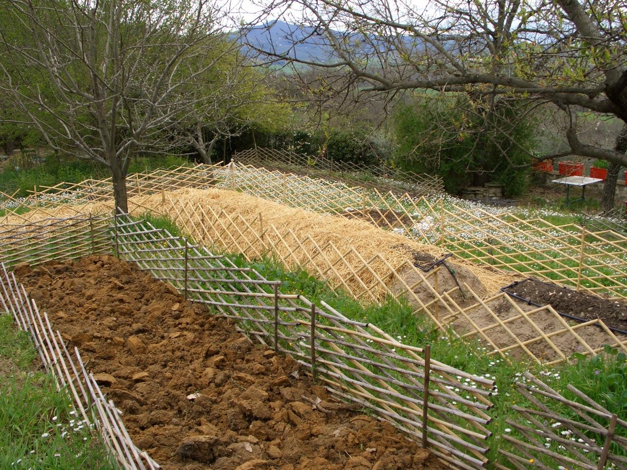 Orto sinergico architetto sfondo con orto in cassoni for Cassoni per orto rialzato